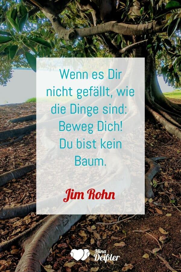 Zitate Nina Deissler Datingcoach Jim Rohn